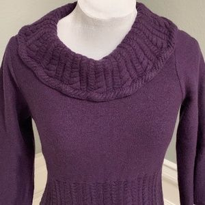 Classiques Entier Merino Wool Cowl neck Sweater